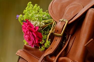 backpack-1482611_1920