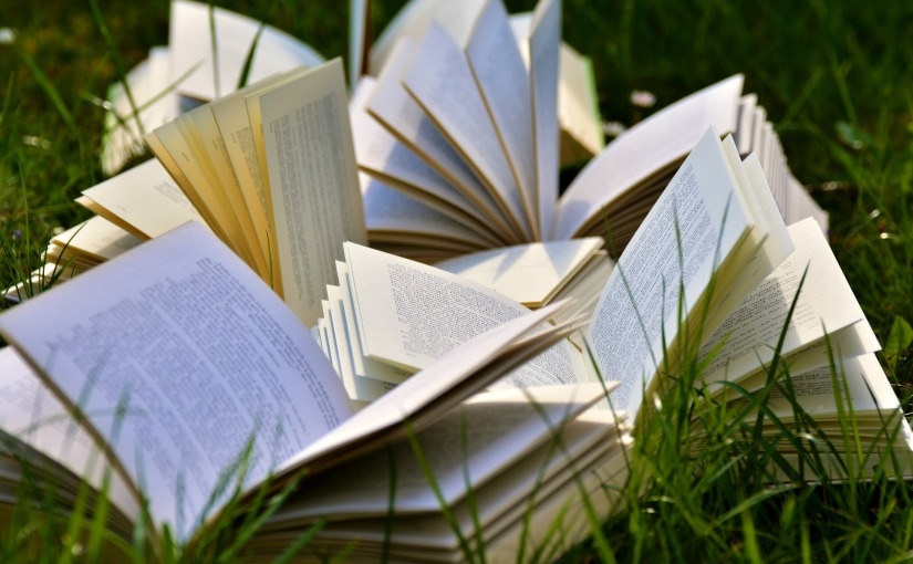 How to Love aBook