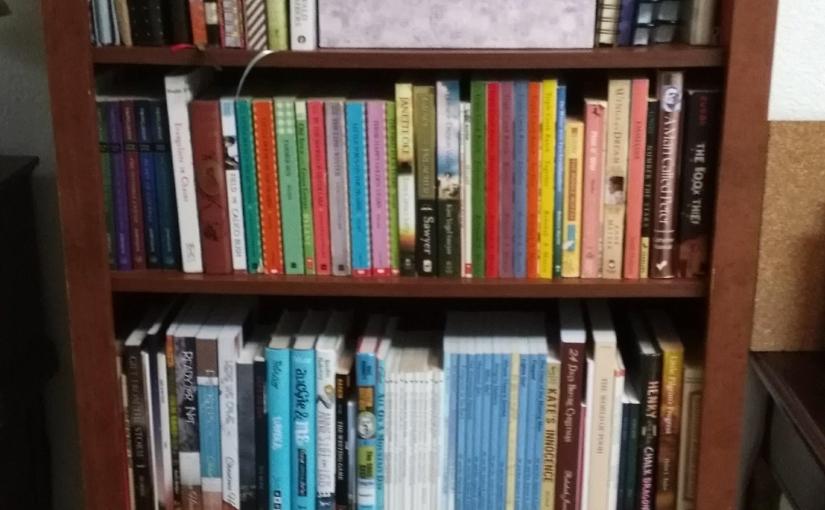 Meet My Bookshelves!