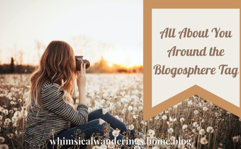 All About You Around the BlogosphereTag